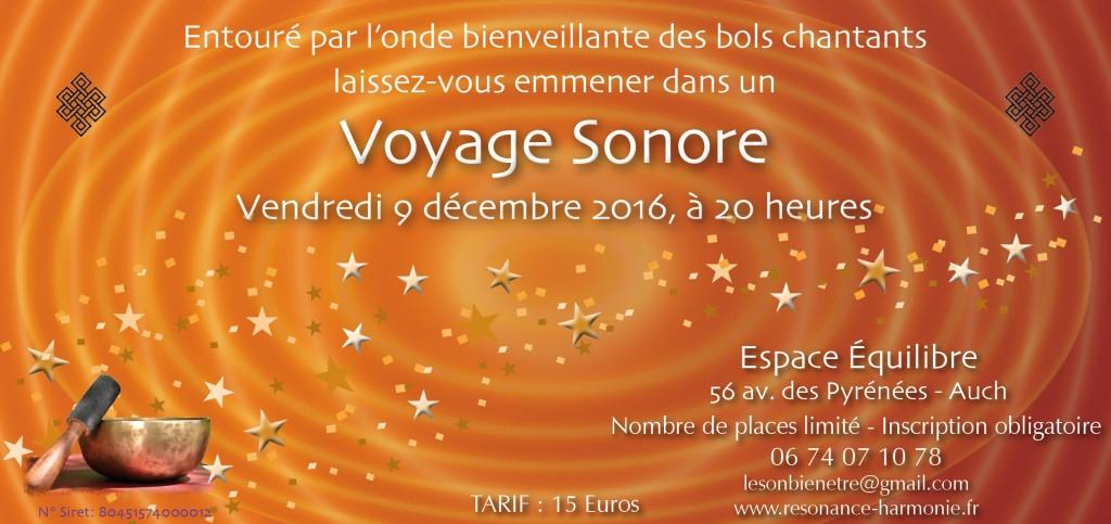 voyage-son